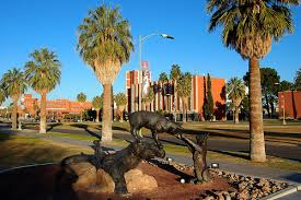 University of Arizona - 20 Most Affordable Online ABA Graduate Certificate Programs