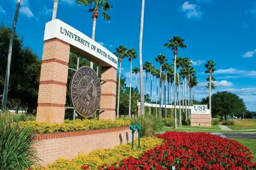University of South Florida - 10 Best ABA Master's Programs in the East