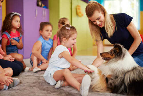 Image for our FAQ on What is Animal-Assisted Therapy?